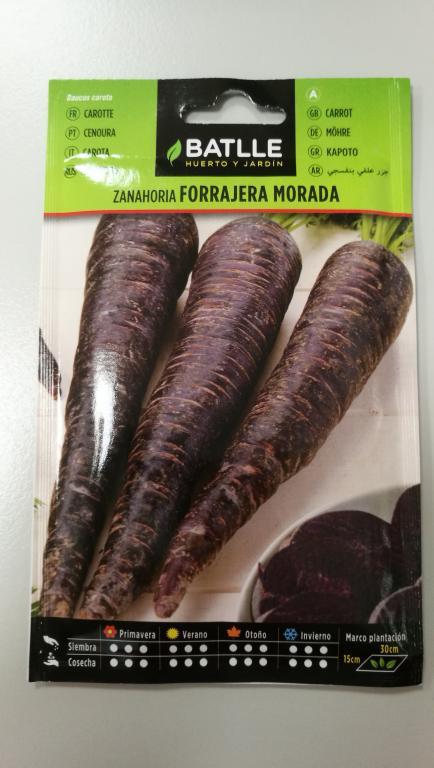 Zanahoria Morada Fitoagricola La zanahoria es una verdura dura, bianual y de clima frío, que crece por la raíz gruesa que produce en la primera estación de crecimiento. zanahoria morada fitoagricola