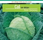 COL SIETE SEMANAS (100 gr.).