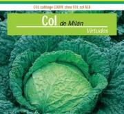COL VIRTUDES 3 (100 gr.).
