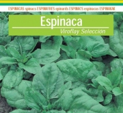 ESPINACA VIROFLAY (100 gr.).