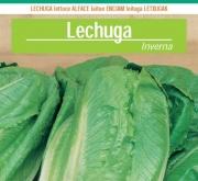 LECHUGA INVERNA Sel. Intersemillas (100 gr.).