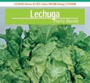 LECHUGA PIERRE BENITE Pildorada (1.000 Semillas).