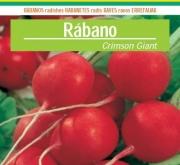 RABANITO REDONDO CRIMSON GIANT (100 gr.).