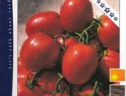 Semillas de Tomates de Pera Rastrero