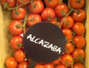 Semillas de Tomates Gordos de Ramillete