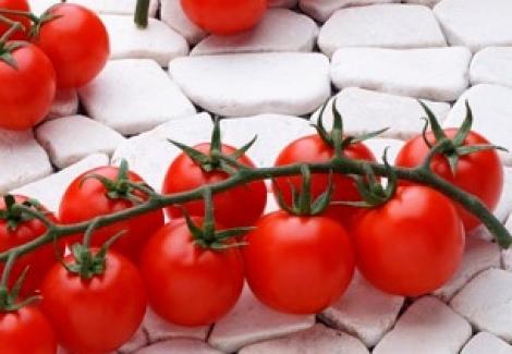 tomate bronco ecologico