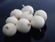 Semillas de Cebollas Blancas de Día Intermedio