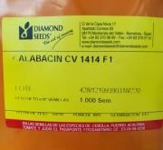 calabacin 1414