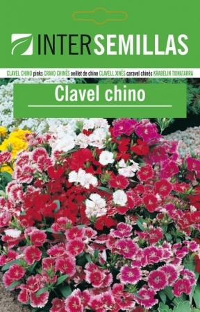 CLAVEL CHINO BABY DOLL / DOUBLE MIX - Comestible Mezcla de Colores (50 gr.).