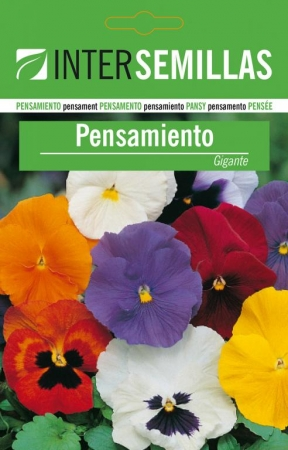PENSAMIENTO SWISS GIANT MIX - Comestible (10 gr.).