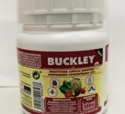 BUCKLEY (100 c.c.). [JED]