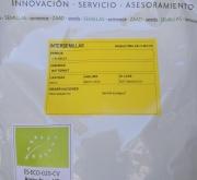 CALABAZA BUTTERNUT ECOLÓGICA (500 gr.)