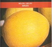 MELON ARIZO (100 gr.).