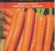 ZANAHORIA NANTESA 2 Sel. Urgelba (100 gr.).