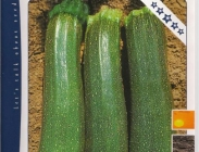 Calabacines Verdes