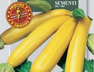 Calabacines Amarillos