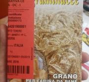 TRIGO ALTAMIRA (100 gr.).