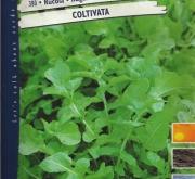 RUCULA CULTIVADA Pildorada (5000 Semillas).
