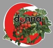 TOMATE DONNA RED F1 (1000 Semillas)