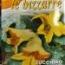 CALABACIN PARA FLORES SAN PASCUAL (3 gr.).