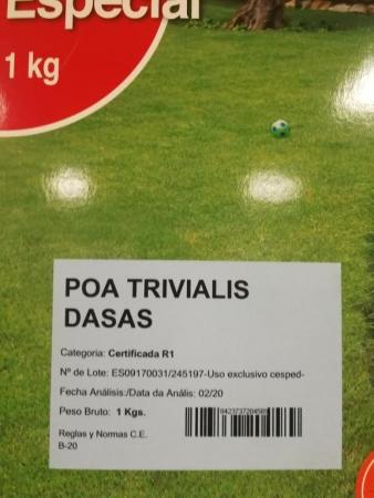 POA TRIVIALIS DASAS Pildorada (1 Kgr.).