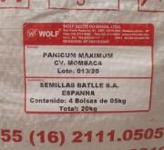 PANICUM MAXIMUM CV. MOMBACA (20 Kgr.) - Minimo 2...