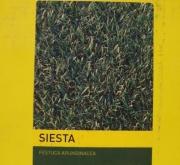 FESTUCA ARUNDINACEA SIESTA (1 Kgr.).
