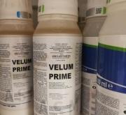 casa bayer precio de nematicida velum