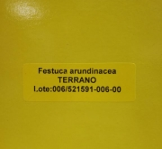 FESTUCA ARUNDINACEA TERRANO (1 Kgr.).
