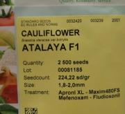 COLIFLOR ATALAYA F1 (2.500 Semillas)