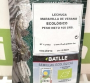 LECHUGA MARAVILLA DE VERANO ECOLÓGICA Sel. Maresme...