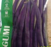 comprar judia purple queen