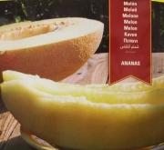 MELON ANANAS (10 gr.).