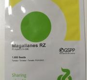 TOMATE MAGALLANES RZ (1.000 Semillas).