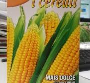 MAIZ DULCE GOLDEN BANTAM (100 gr.).