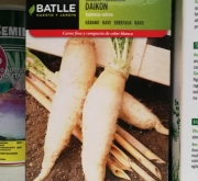 RABANO MINO EARLY Sel. DAIKON (250 gr.)