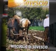 ABONO VERDE MEZCLA EXTRA (1 Kgr.).