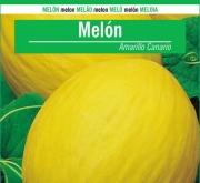 MELON AMARILLO CANARIO (100 gr.).