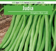 JUDIA STRINGLESS BLUE LAKE S7 (5 kgr.).