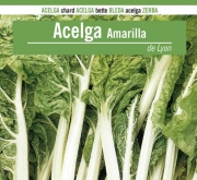 ACELGA AMARILLA DE LYON 2/3 (100 gr.).