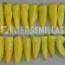 PIMIENTO P-10540 F1 (1.000 Semillas).