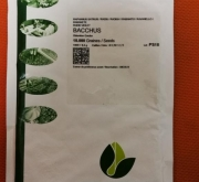 RABANITO BACCHUS Cal. 2,50-2,75 (10000 Semillas).