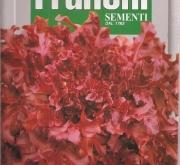 LECHUGA RED SALAD BOWL (100 gr.).