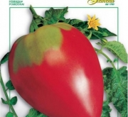 TOMATE CORAZON DE BUEY Sel. Franchi (50 gr.)