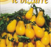 TOMATE YELLOW PEARSHAPED (50 gr.).