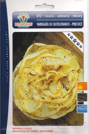 ACHICORIA VETEADA DE CASTELFRANCO PRECOZ (1,5 gr.).