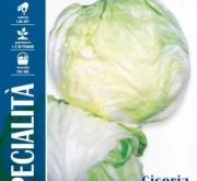 ACHICORIA BLANCA INVERNAL (1,5 gr.).