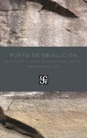 PUNTO DE EBULLICION ANTOLOGIA DE LA POESIA CONTEMPORANEA EN GALLEGO / REYES, MIRIAM