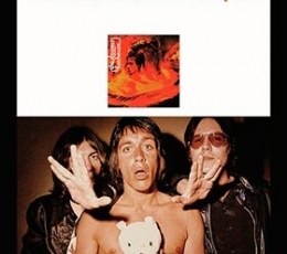 STOOGES, THE/FUN HOUSE EL SONIDO DEL FREE-PUNK...