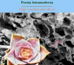 POETICA DEL SENTIDO/POESIA INTRAMODERNA /...